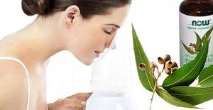 Эвкалипт эффективно устраняет кашель, прост в применении в домашних условиях