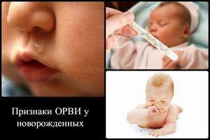 Лечение новороденного по Комаровскому