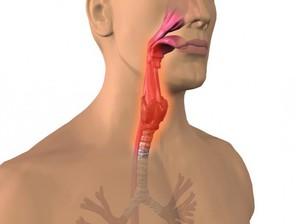 Гнойные пробки в горле
