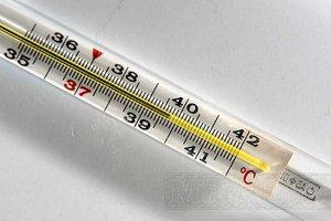 При активации стрептококка вириданс поднимается температура